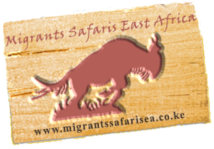 Migrants Safaris East Afica