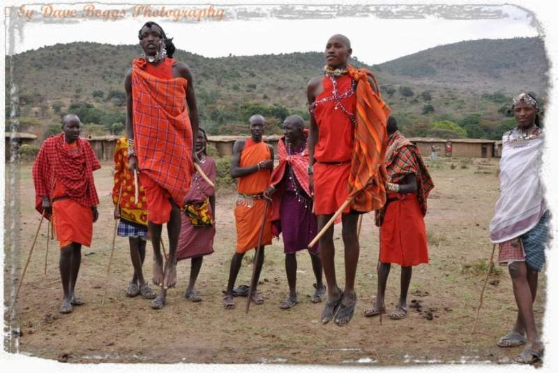 Maasai Safari